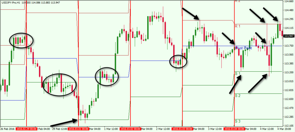 Free daily forex pivot point