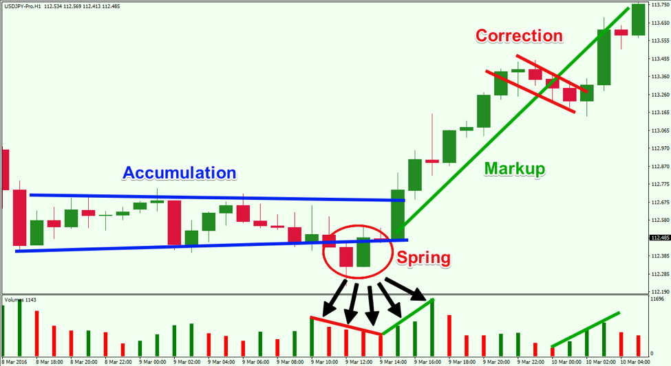Forex Tutorial What is Forex Trading  Investopedia