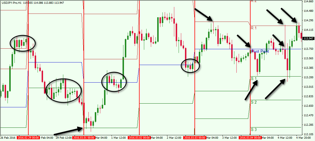 How to trade pivot points forex
